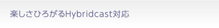 楽しさひろがるHybridcast対応